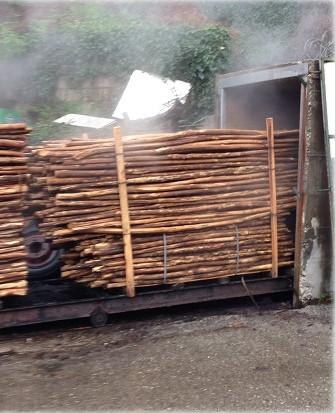 Πάσσαλοι Καστανιάς - Εξαγωγή από Άτμηση