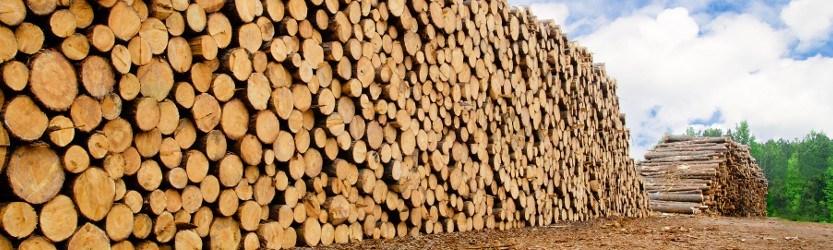 Zolotas Wood Company